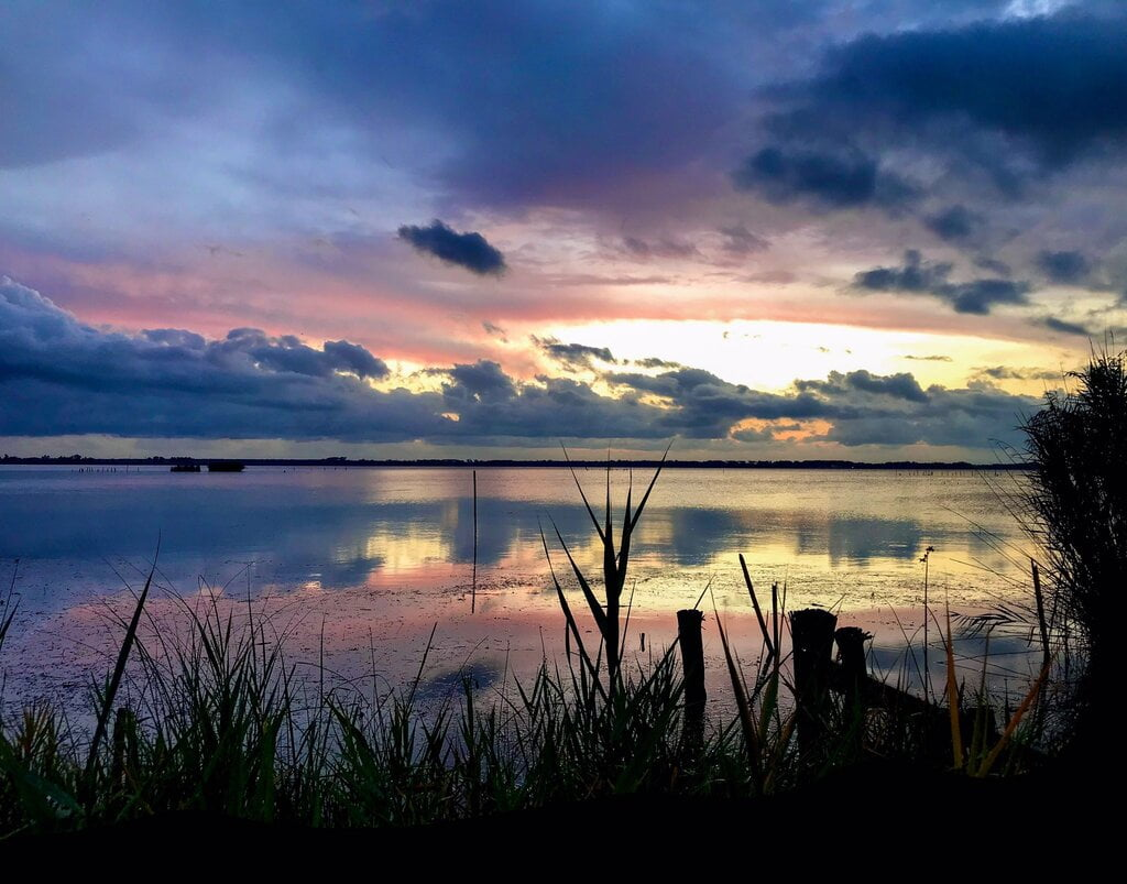 oasi lago di massaciuccoli toscana